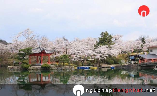 Những địa điểm ngắm hoa anh đào ở Nhật, Du lịch Chuugoku