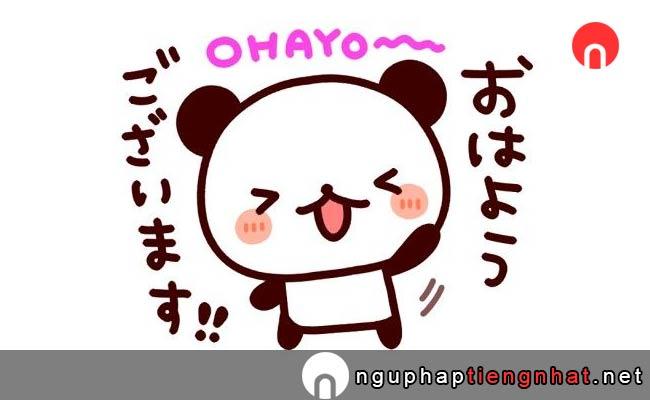xin chào tiếng nhật là gì、おはようございます, ohayougozaimasu
